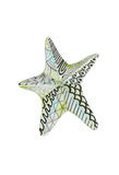 Decorated Starfish Prints by Pam Varacek