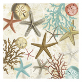 Coral Menagerie 2 Prints by Carole Stevens