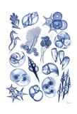 Blue Sea Kunstdrucke von Albert Koetsier