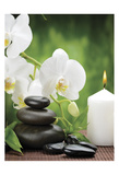 Zen 1 Poster