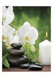Zen 1 Posters