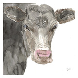 Hogans Cow Prints by Beverly Dyer
