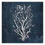 Blue Wooden Coral Two Print by Jace Grey