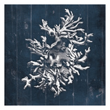 Blue Wooden Coral Four Posters by Jace Grey
