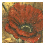 Red in The Gold Print by Linda Davey