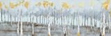 Birch Gray Day Art by Sunny Sunny