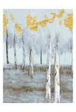 Birch Glint 1 Print by Sunny Sunny