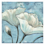 White Poppie 2 Prints by Linda Davey