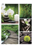 Zen Prints