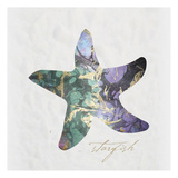 Starfish Paper Posters by Melody Hogan