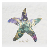 Seastar Paper Prints by Melody Hogan