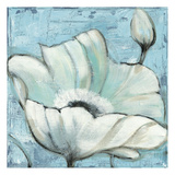White Poppie 1 Posters by Linda Davey