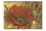 Red Poppie 1 Posters by Linda Davey