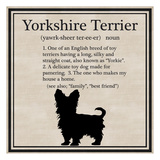 Yorkshire Terrier Posters by Taylor Greene