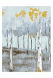 Birch Glint 2 Prints by Sunny Sunny