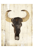 Bull Skull Two Posters by Jace Grey