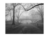 Central Park Gothic Bridge,Walker - New York City Landmarks Fotografisk tryk af Henri Silberman