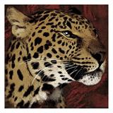 Leopard Streaks Poster by Jace Grey