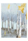 Birch Glint 4 Prints by Sunny Sunny