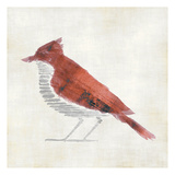 The Red Birdy Prints by Kristin Emery