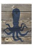 Coastal Squid Plakater af Melody Hogan