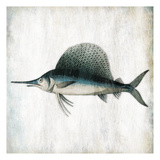 Swordfish Profile Prints by Jace Grey