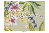 Happy Mothers Day Prints by Lorraine Rossi