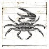 Crab Pattern Prints by Jace Grey