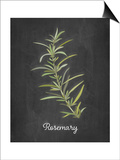 Rosemary Prints by Amy Cummings