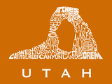 Utah Stretched Canvas Print