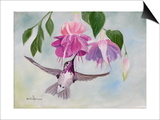Pink Fuchsias and Hummer Posters by Julie Peterson