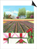 Tulip Quilt Print by Julie Peterson