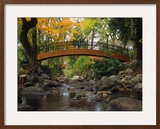 Footbridge over Stream Framed Photographic Print by Robert Glusic