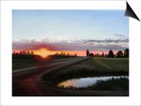 Dancing Sun Prints by Julie Peterson