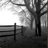 Corner Fence Stretched Canvas Print by Harold Silverman