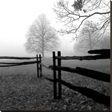 Fence in the Mist Stretched Canvas Print by Harold Silverman