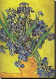 Irises in Vase Stretched Canvas Print by Vincent van Gogh