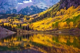 Fall in the Colorado Fotografie-Druck von  duallogic