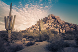 Desert Landscape in Scottsdale, Phoenix, Arizona Area - Image Cross Processed Photographic Print by  BCFC