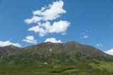 Lush Alaskan Mountains Photographic Print by  cec72