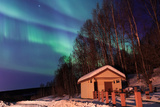 Aurora, Night Sky at Alaska, Fairbanks Photographic Print by  KitLeong