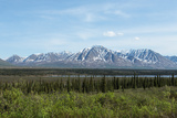Alaska's Wilderness Photographic Print by  cec72
