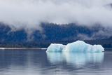 Melting Iceberg in Mendenhall Lake Photographic Print by  fmcginn
