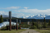 The Trans-Alaska Oil Pipeline Photographic Print by  cec72