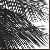 Palms 4 (detail) Stretched Canvas Print by Jamie Kingham