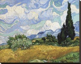 Wheat Field with Cypresses, 1889 Stretched Canvas Print by Vincent van Gogh