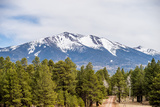 Landscape with Humphreys Peak Tallest in Arizona Photographic Print by  digidreamgrafix