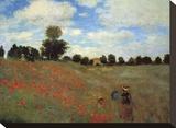 Wild Poppies Trykk på strukket lerret av Claude Monet