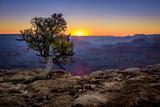 Grand Canyon National Park Arizona Stampa fotografica di  pxhidalgo