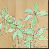 Soft Leaves Stretched Canvas Print by Jennifer Mercede